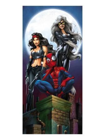 Ultimate Spider-Man No.52 Cover: Spider-Man, Elektra and Black Cat