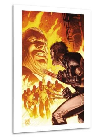 Wolverine Weapon X No.5 Cover: Wolverine