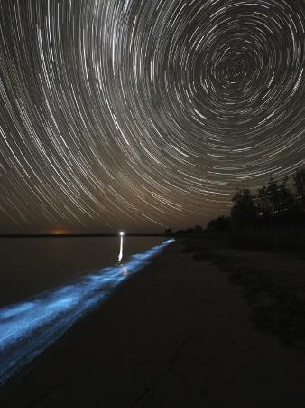 Star Trails over Bioluminescence in Waves on the Shores of the Gippsland Lakes, Australia