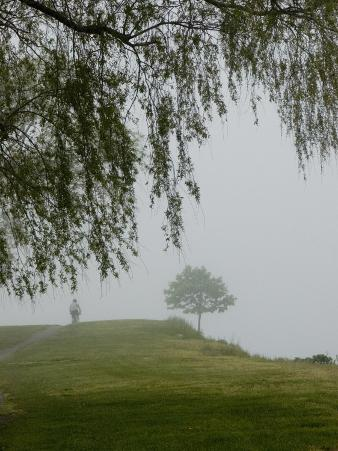 A Cyclist Pedals Through Fog Enveloping a Connecticut Shoreline