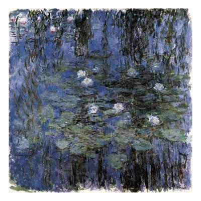 Blue Waterlilies