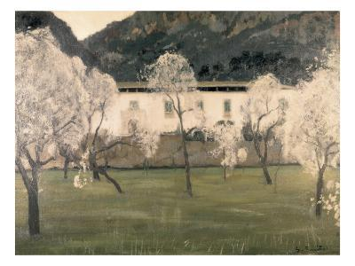 Lanscape with Flowered Almond Trees
