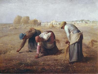 The Gleaners (Des Glaneuses Ou Les Glaneuses)