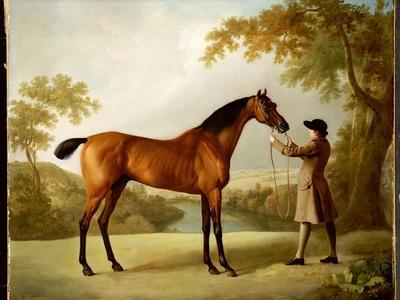 Tristram Shandy, a Bay Racehorse Held by a Groom in an Extensive Landscape, C.1760
