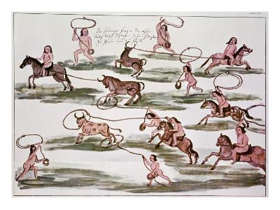The Mexican Indians' Method of Hunting, from 'Hacia Alla Y Para Aca'