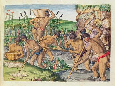 How the Indians Collect Gold from the Streams, from 'Brevis Narratio..'