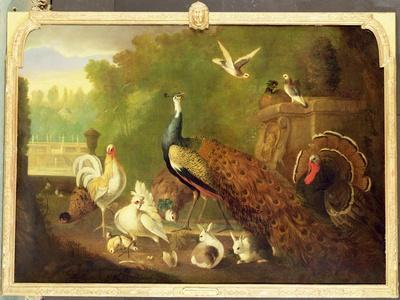 A Peacock, Turkey and Other Birds in an Ornamental Garden