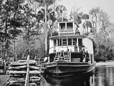 The 'Okahumkee' Steamer Taking on Wood Fuel in Florida, C.1895