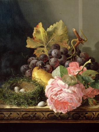 Still Life, Roses, Fruit and Bird's Nest