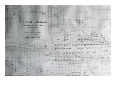 Whale Chart of the North Pacific, 1851