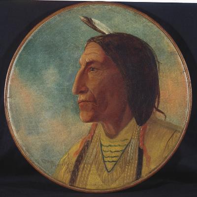 Portrait of Chief Wolf Robe, 1892