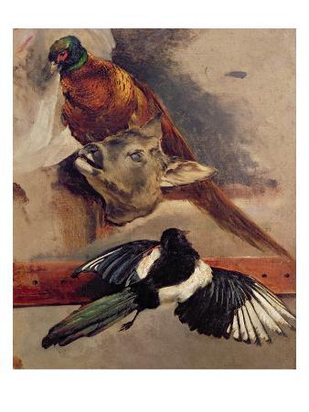 Still Life of Game, C.1812-16