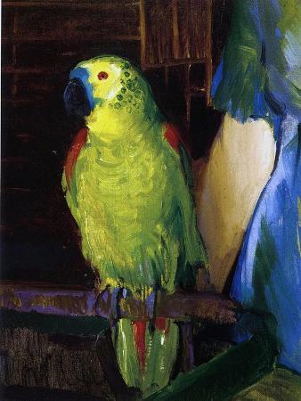 Parrot, 1915