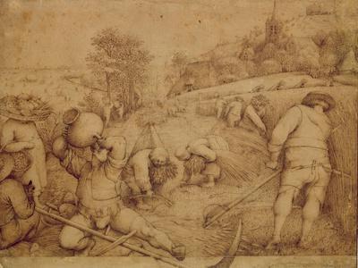 Summer, 1568