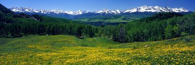 San Miguel Mountains in Spring, Colorado, USA