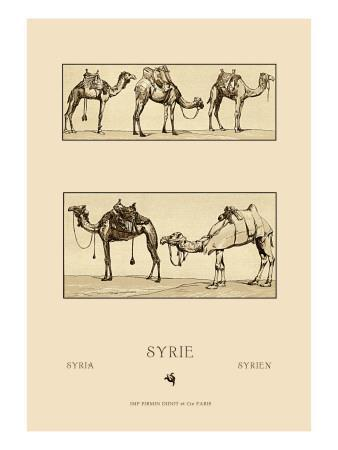 Variety of Howdahs from Syria