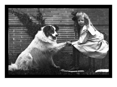 Girl Shaking Hands with Dog