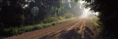 Empty Gravel Road in the Wilderness, Kent County, Michigan, USA
