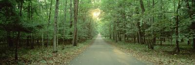 Road Running through a Forest, Door County, Wisconsin, USA