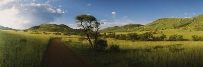 Dirt Road Running through a Landscape, South Africa