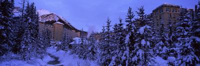 Snow Covered Trees at Fairmont Chateau, Mount Saint Piran, Banff National Park, Alberta, Canada