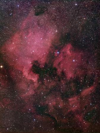 The North American Nebula (NGC 7000) is an Emission Nebula in the Constellation Cygnus
