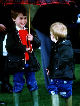 Prince Harry on right with Prince William at a polo match in Cirencester
