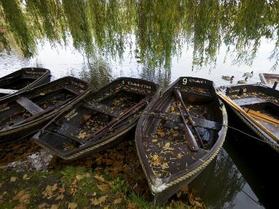 Row Boats Moored at Lakeside at Hever Castle