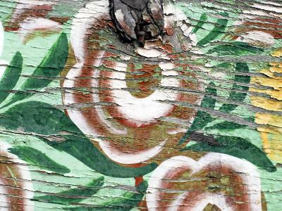 Close-Up of Faded Paint Work on Farmer's Cart