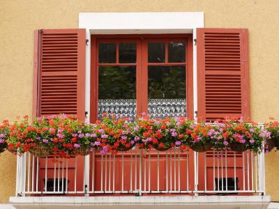 Pots of Geranium Flowers on Window Balcony