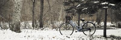 Bike on Snowy Trail in Hokkaido University Forest