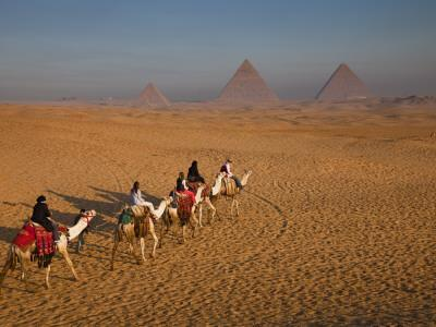 Tourists on Camels and Pyramids of Giza