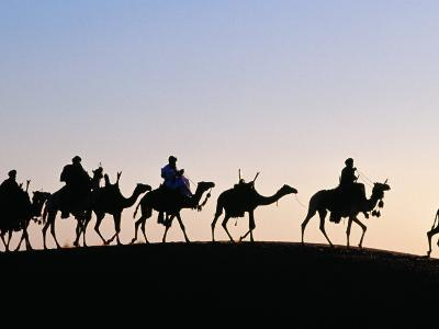 Desert Just Outside Timbuktu, Tuareg Camels at Sunset