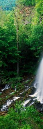 High Angle View of Falling Spring Falls, George Washington National Forest, Virginia
