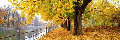 Autumn Scene, Munich, Germany