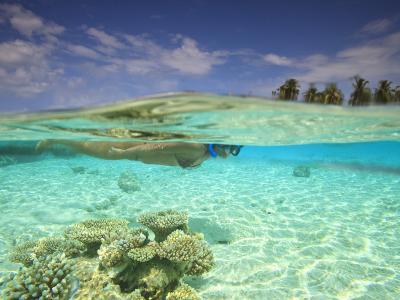 South Huvadhoo Atoll, Southern Maldives, Indian Ocean
