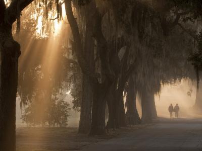 Boys Walking in Early Morning Fog at Bethesda, Savannah, Georgia, USA