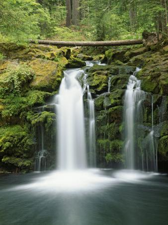 View of Whitehorse Falls, Umpqua National Forest, Oregon, USA