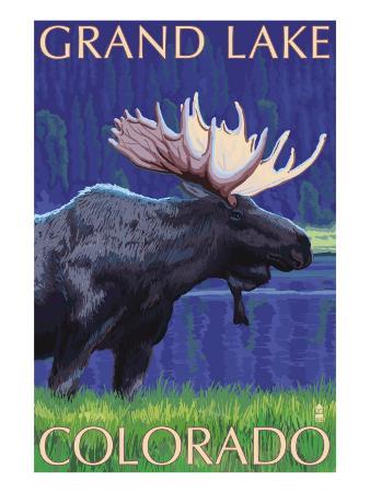 Grand Lake, Colorado - Moose at Night