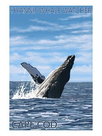 Hyannis Whale Watcher - Cape Cod, MA