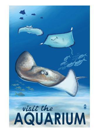 Rays - Visit the Aquarium