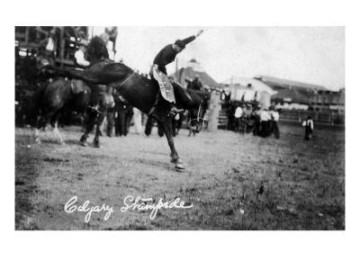 Calgary, Canada - Rodeo; Bucking Horse at the Stampede