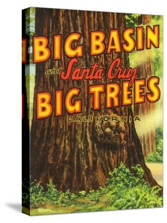 Santa Cruz, California - Big Trees Park, Big Basin Letters
