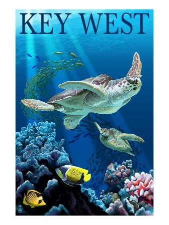 Key West, Florida - Sea Turtles