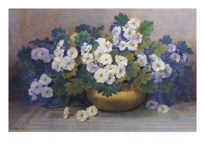 A Bowl of Primulas