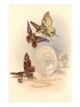Drunken Butterflies