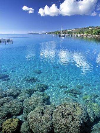Reef, Punaauia, Tahiti, French Polynesia