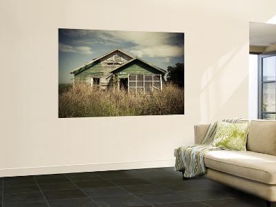 USA, Louisiana, Cajun Country, St. Martinville, Abandoned Farmhouse