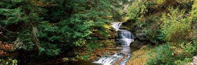 Waterfall in a Forest, Robert H. Treman State Park, Ithaca, Tompkins County, Finger Lakes