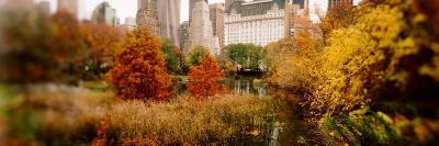 Park with Buildings in the Background, Central Park, Manhattan, New York City, New York State, USA